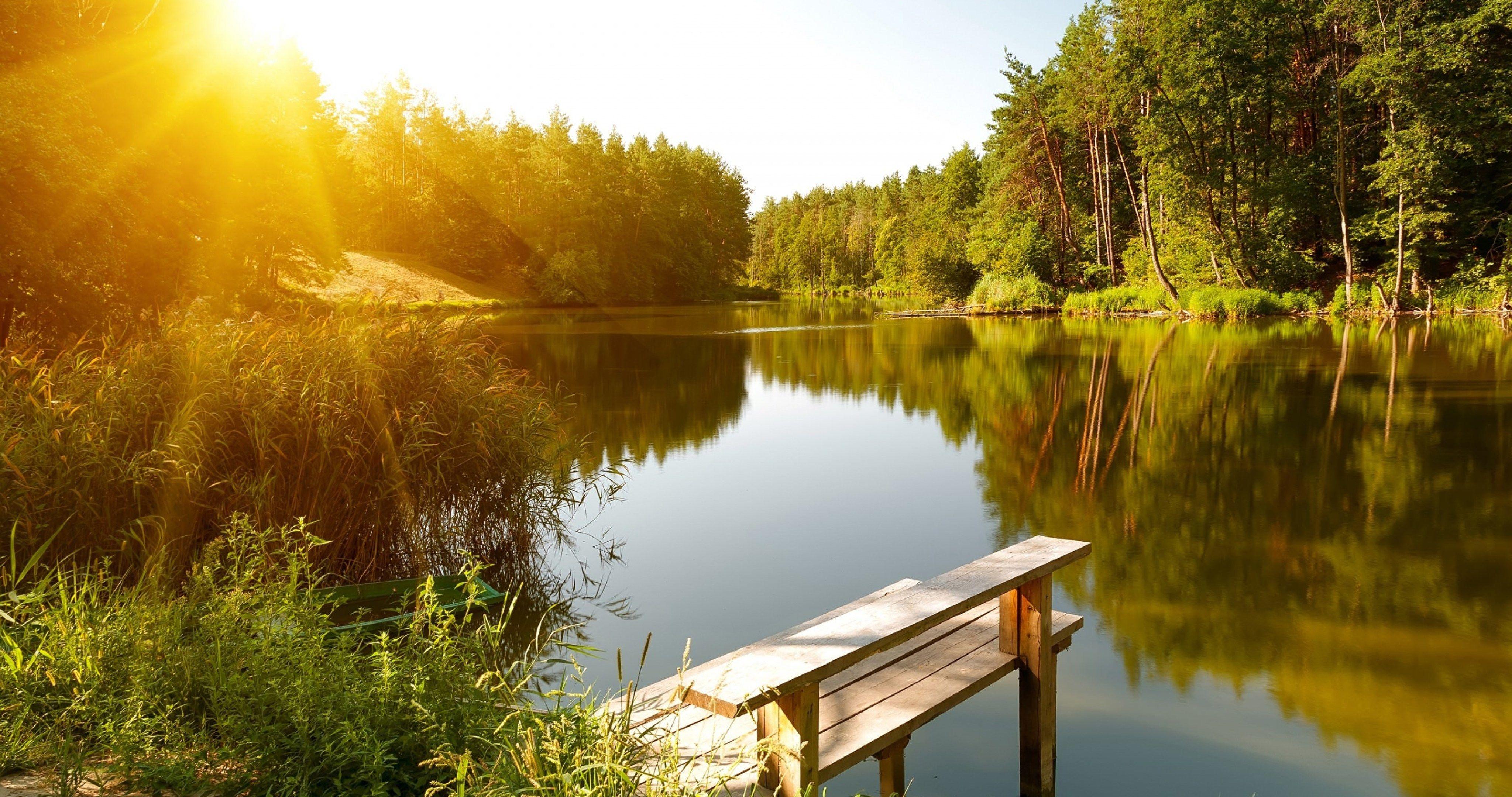 Summer River Landscape 4k Ultra Hd Wallpaper Summer Landscape Forest Lake Lake Stock