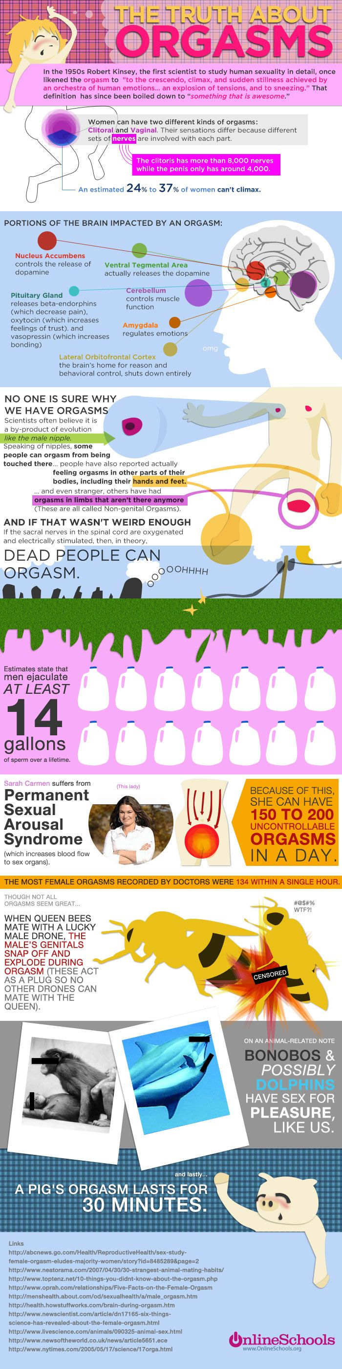This Infographic Gives All The Facts And Information About An Orgasm