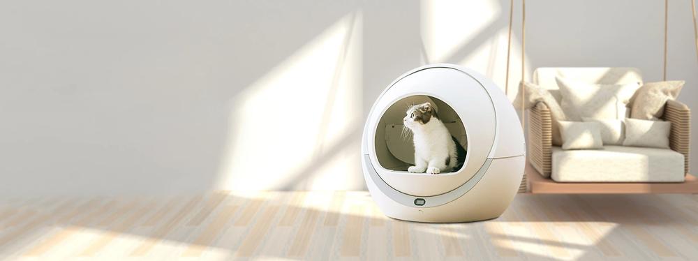 Petree Automatic Self Cleaning Cat Litter Box In 2020 Self Cleaning Litter Box Litter Box Cleaning Litter Box