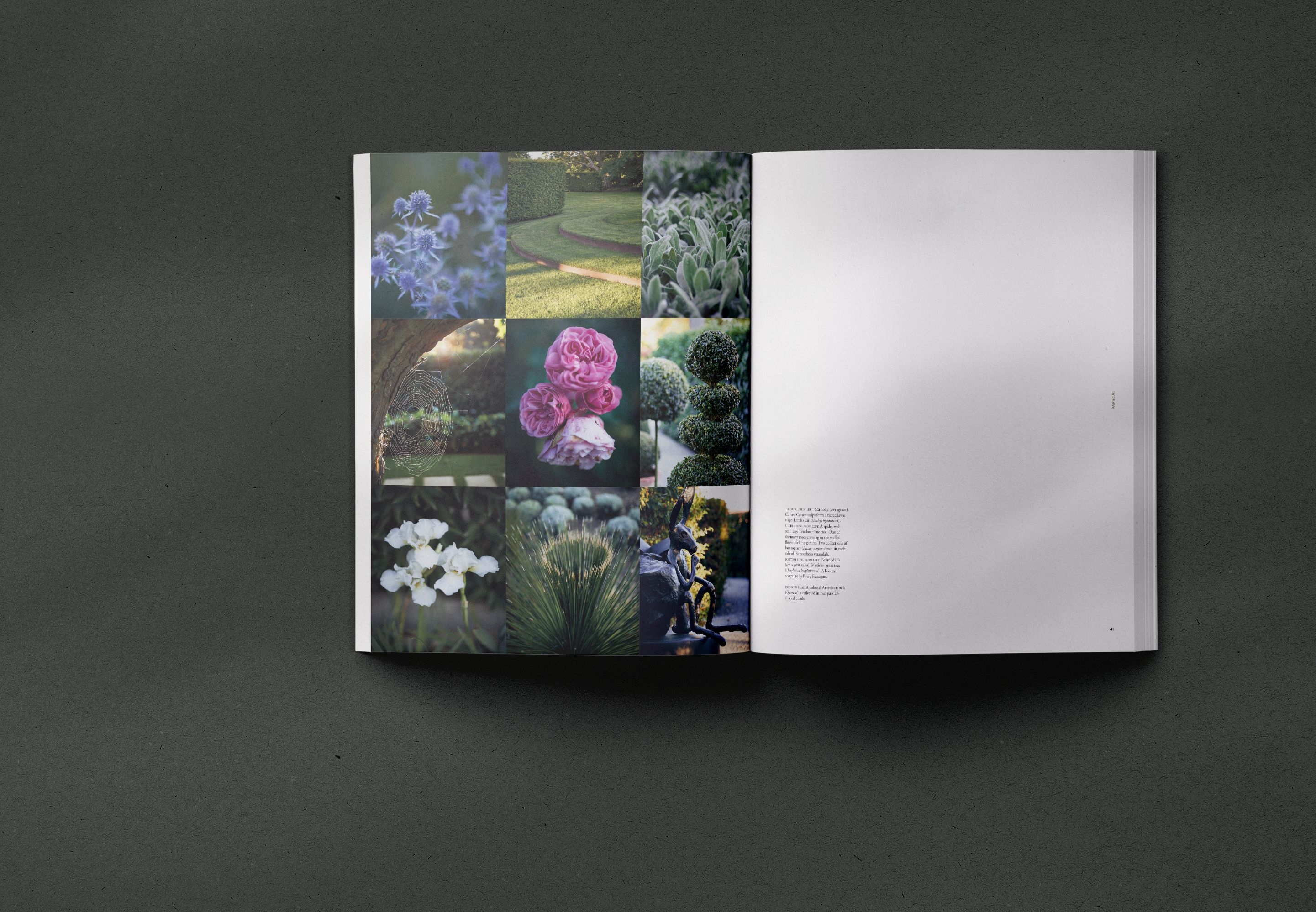 Coffee table book on the New Zealand Landscape designer ...