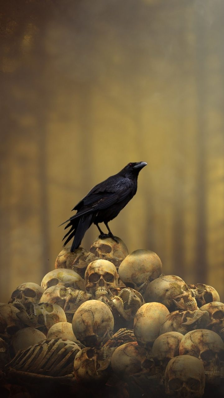 Fantasy, raven, skulls' heap, bird, 720x1280 wallpaper