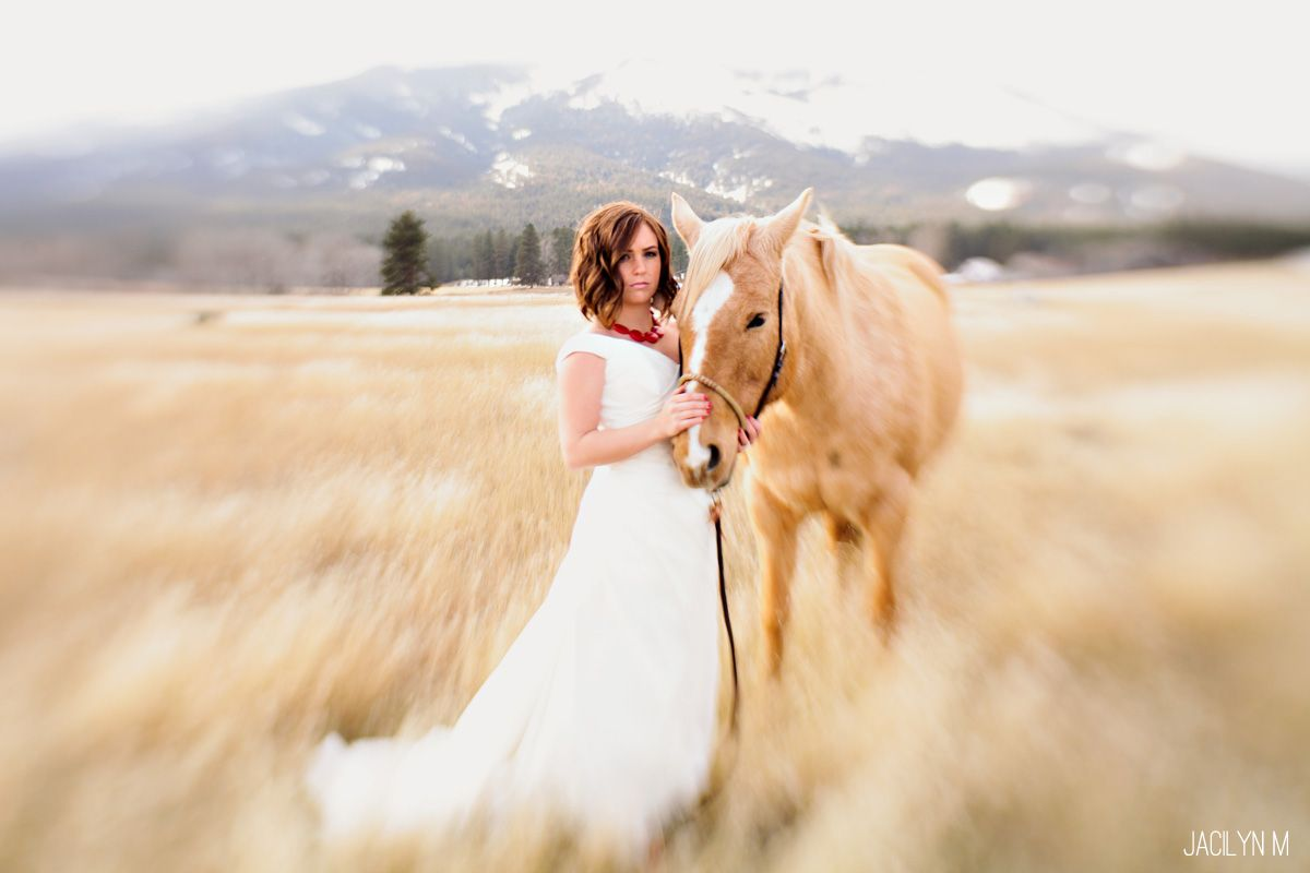 Trash the Dress with mountains and horses. Really, does it get any better?