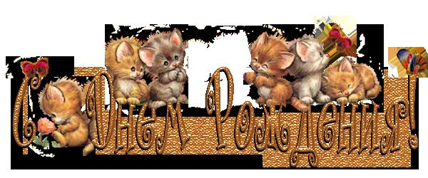 Картинки котики с надписями с днем рождения