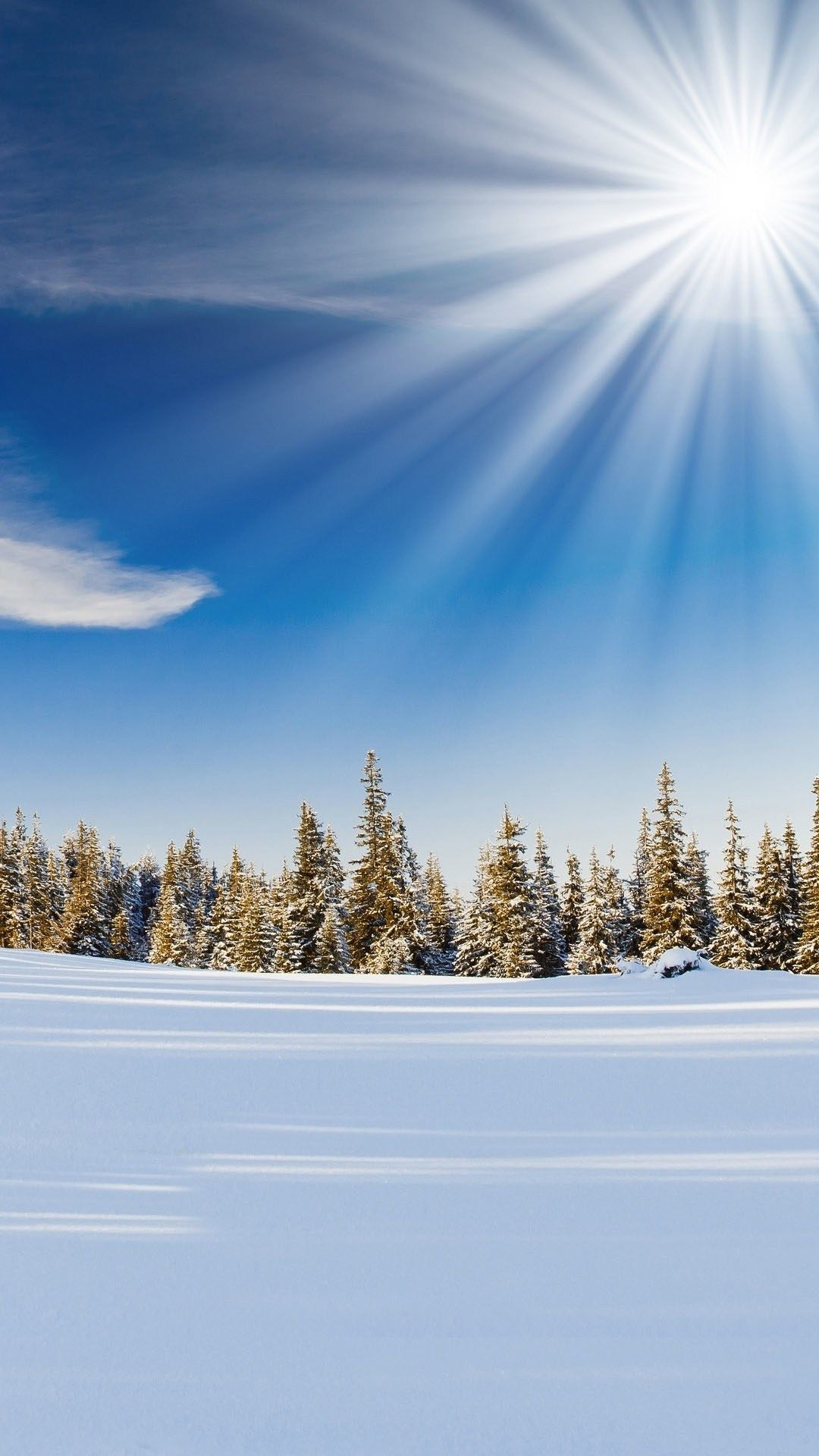Winter Sunlight Snowy Forest Iphone 6 Plus Wallpaper Iphone Wallpaper Winter Android Wallpaper Winter Background Images