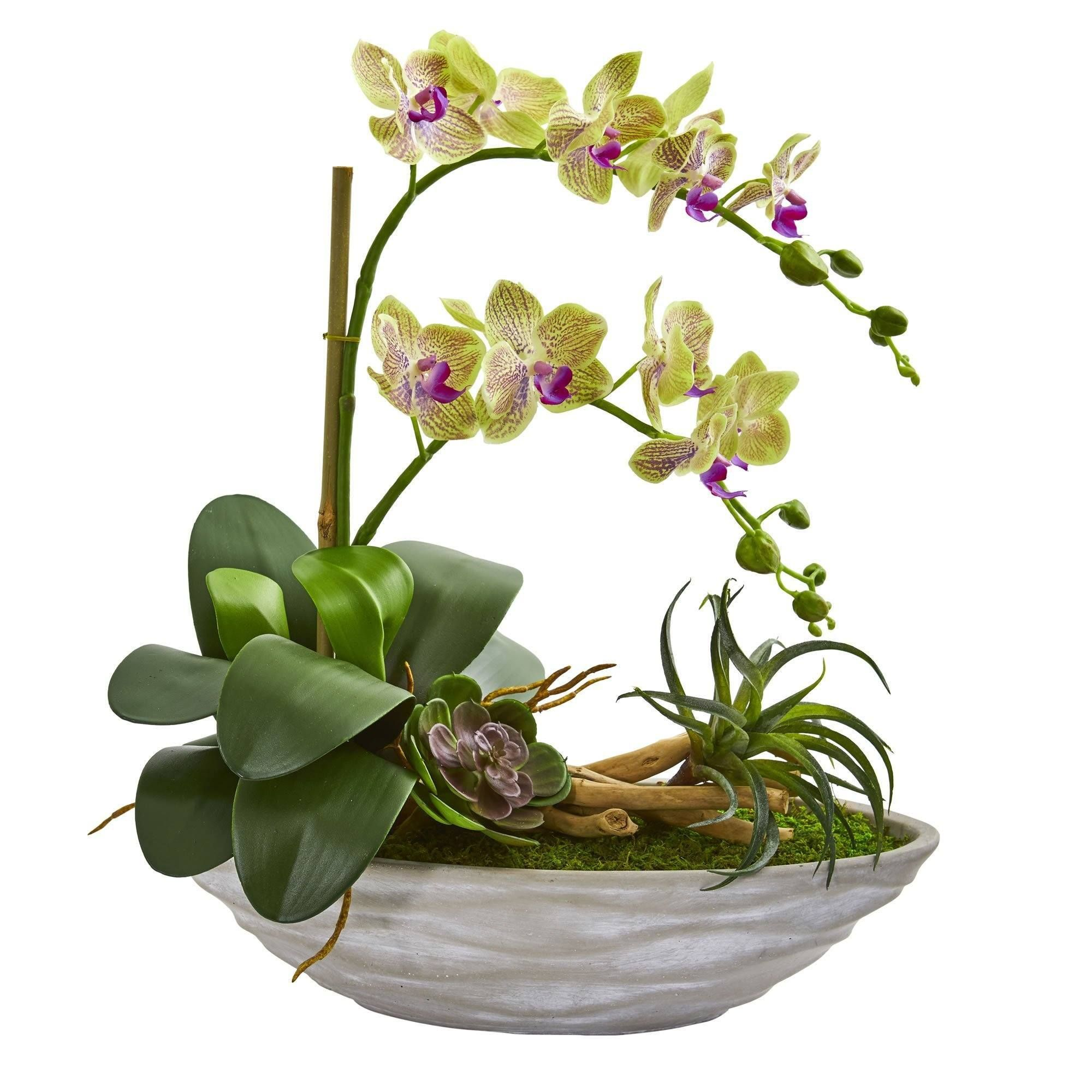 Phalaenopsis Orchid And Succulent Artificial Arrangement In White Vase In 2021 Succulent Landscape Design Succulent Arrangements Orchids
