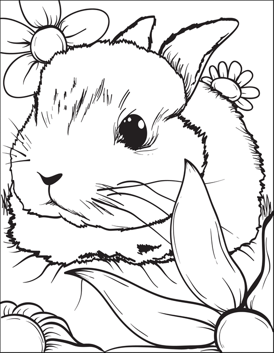 Supplyme Online Teacher Supply Store Formerly Mpm School Supplies Bunny Coloring Pages Easter Bunny Colouring Rabbit Colors