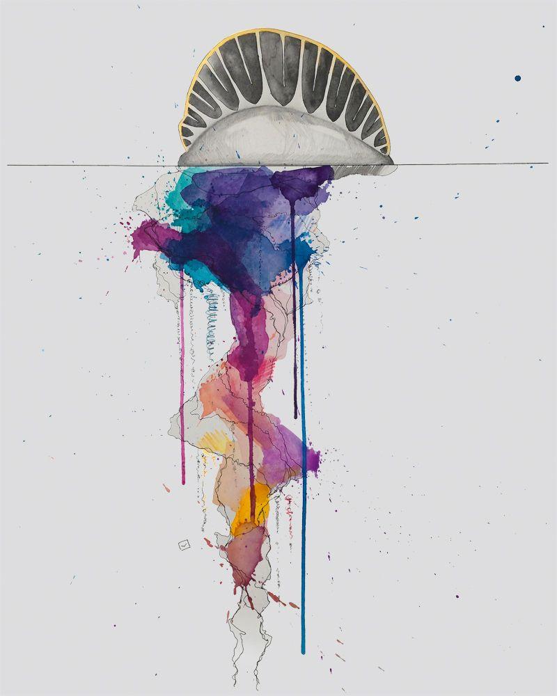 79cddf022 portuguese man of war watercolor - Google Search | Watercolor ...