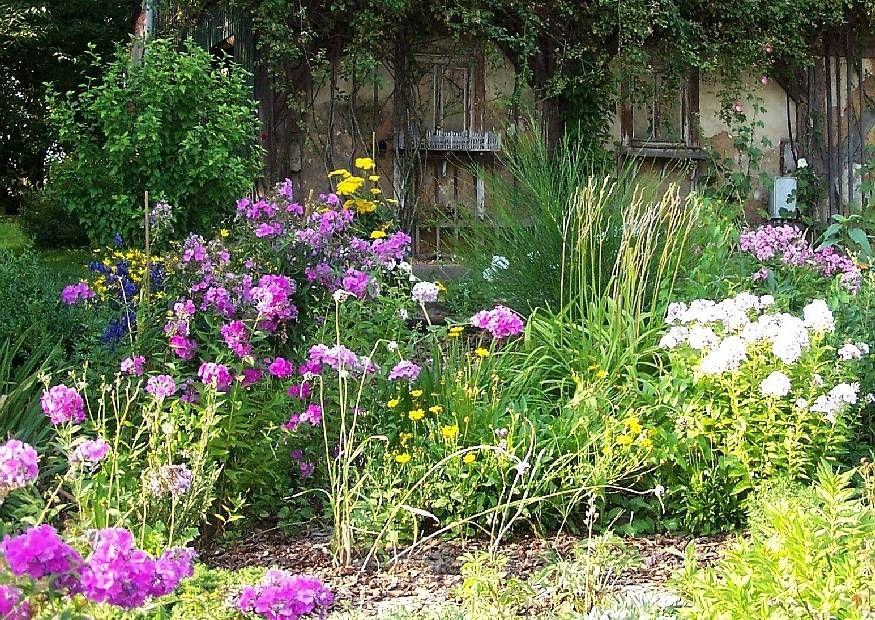 Fesselnd Englischer Garten   Cottagegarten Garten Anlegen, Stauden, Englisch,  Anlage, Balkon, Blumen