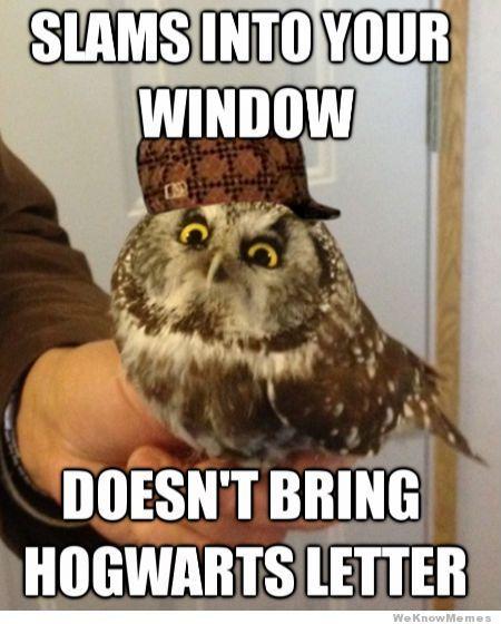 Vitamin Ha 15 Funny Rage Comics Harry Potter Memes Harry Potter Obsession Harry