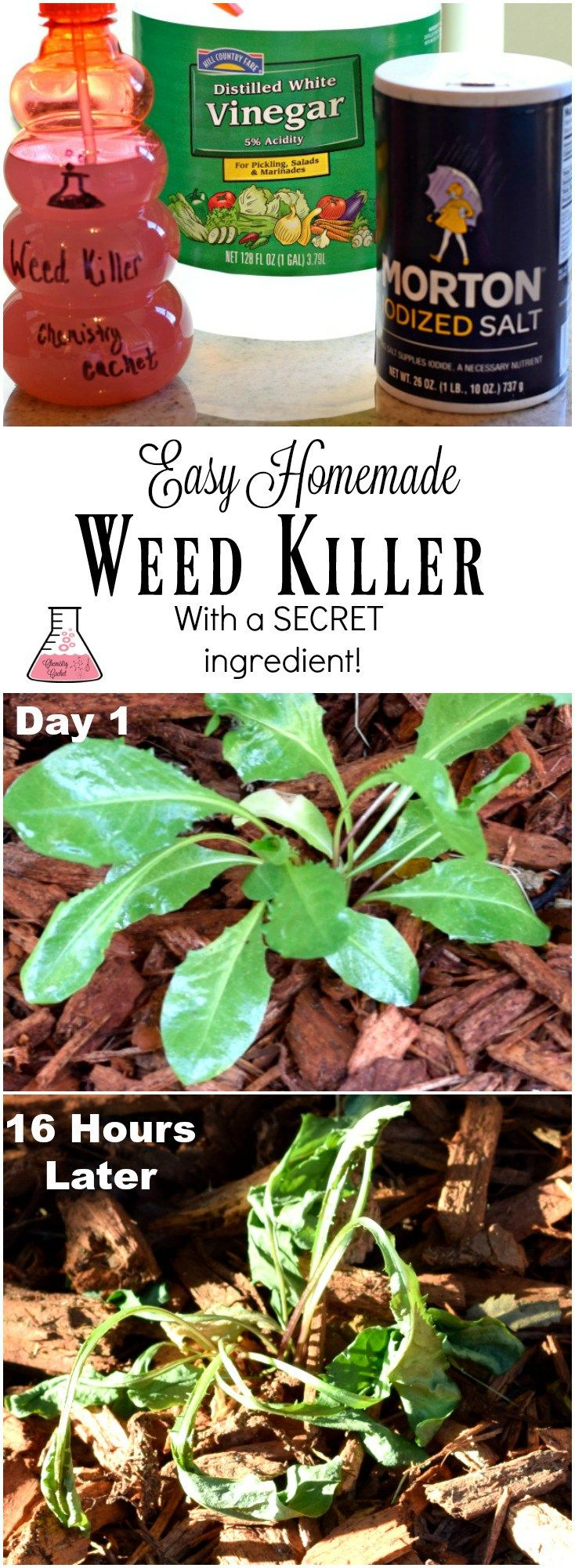 Kill weeds in flower beds - Easy Homemade Weed Killer With Secret Ingredient