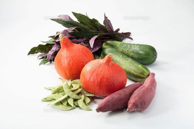 加賀野菜 - Google 検索