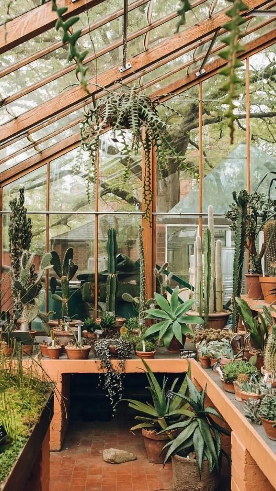 Greenhouse Vibes Pinterest Backyard greenhouse in minnesota