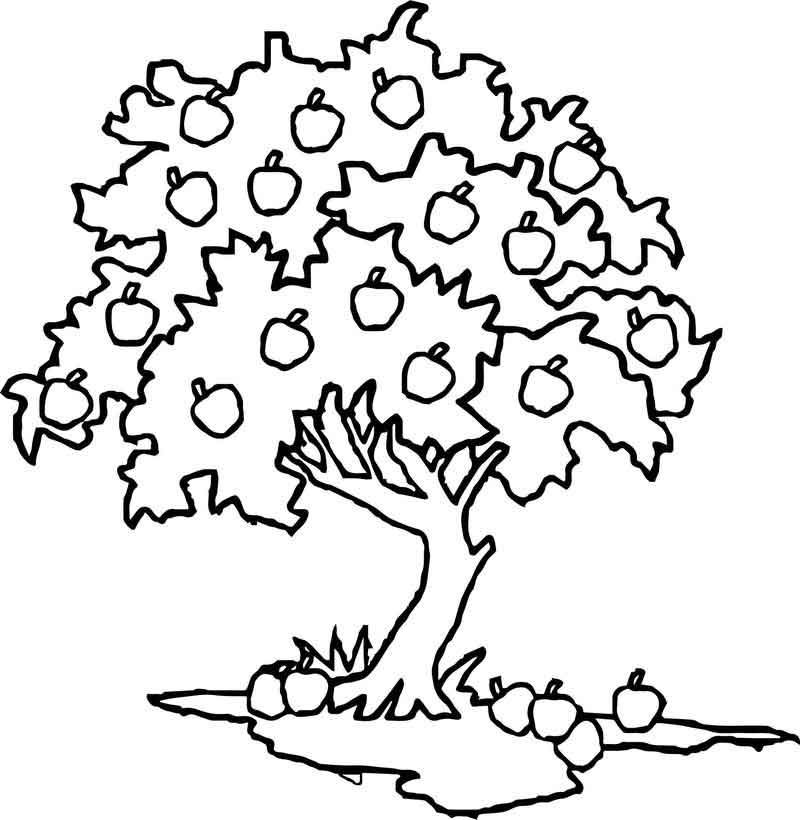 How To Draw Apple Tree Coloring Page. di 2020