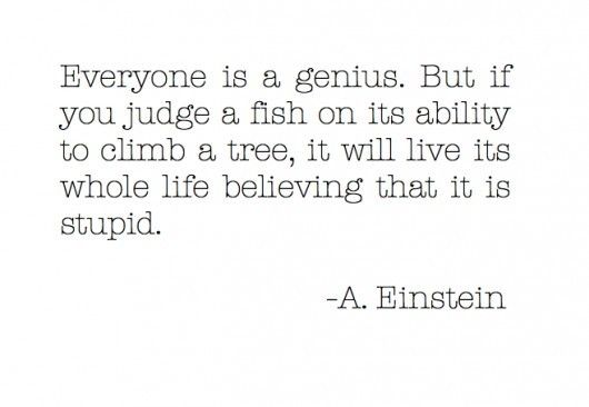 Image result for einstein quote everybody is a genius