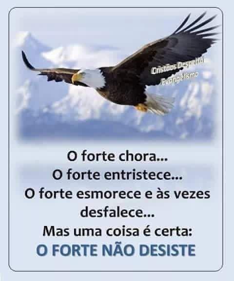 Pin De Sam Silva Em Sentimento Frases Fortes Frases E Mensagens