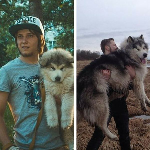 Kids And Their Pets Then And Now