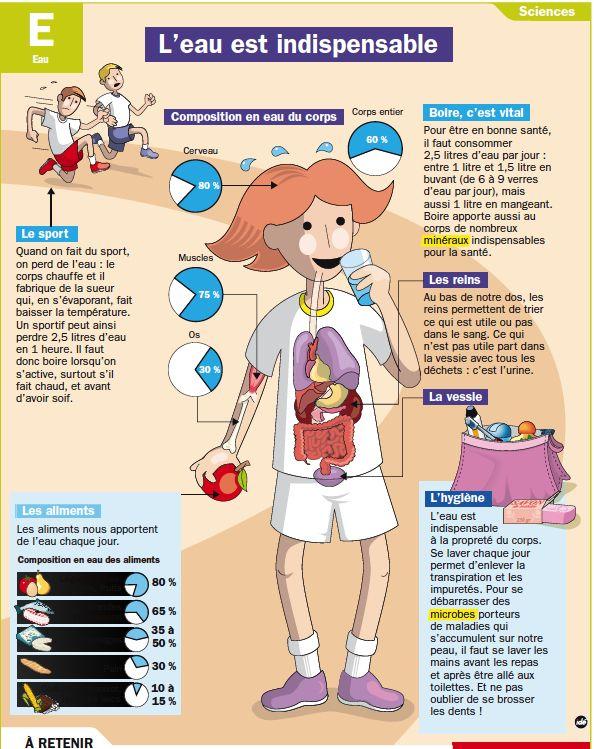 Leau Est Indispensable Fransız Ve Sağlık