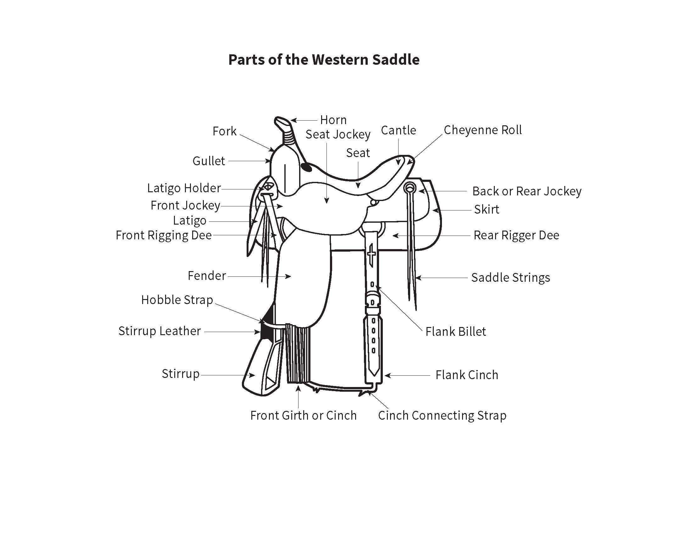English Saddle Click To View Larger Image With Images