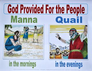Exodus 16 Bible Fun For Kids Moses Manna Quail To