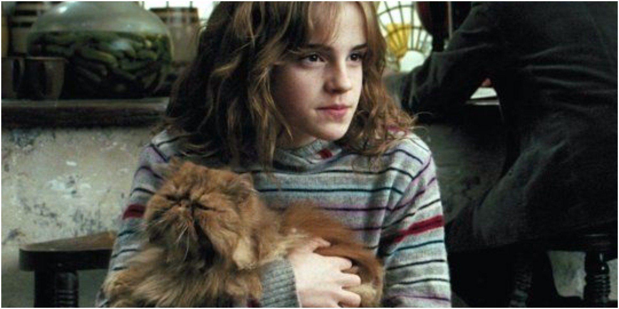 Harry Potter 10 Times Crookshanks Was The Best Pet