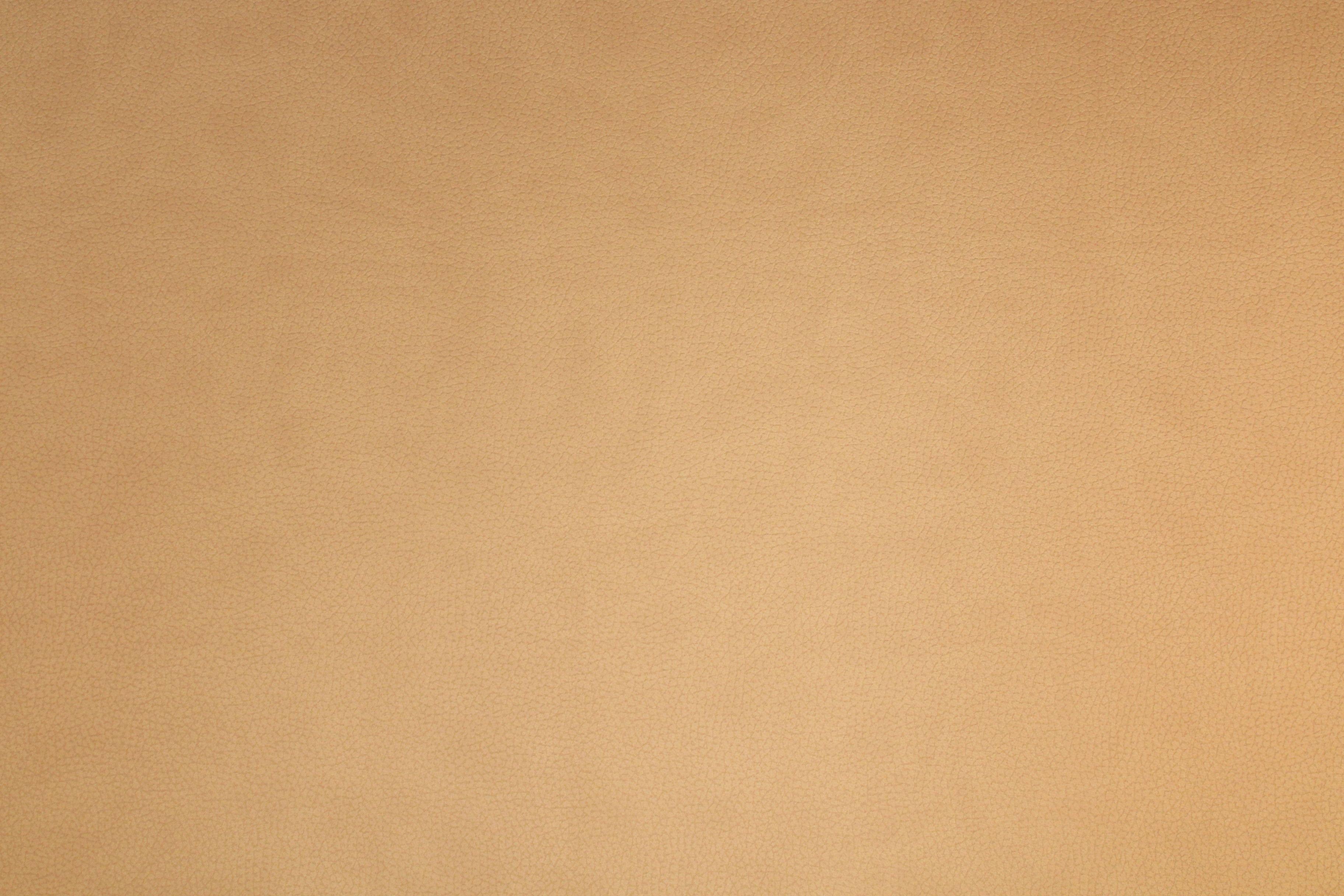 Fond beige texture cuir background mioche studio matériel