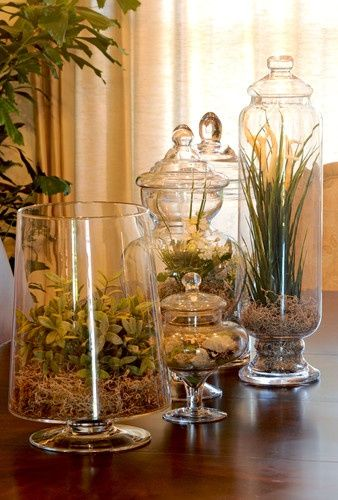 Apothecary Jars Decorating Ideas Apothecary Jars Design Pictures