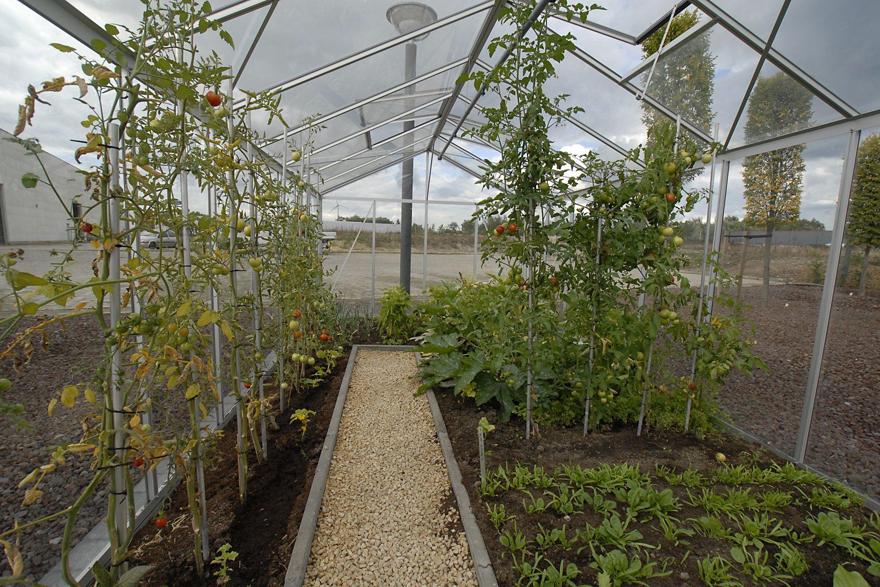 serre garden serre maxi 3 09 x 5 30 m aluminium brut decor jardin pinterest potager. Black Bedroom Furniture Sets. Home Design Ideas