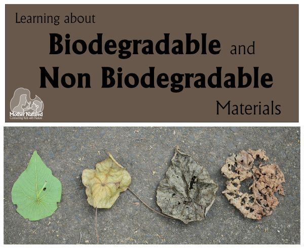 pictures of non biodegradable things