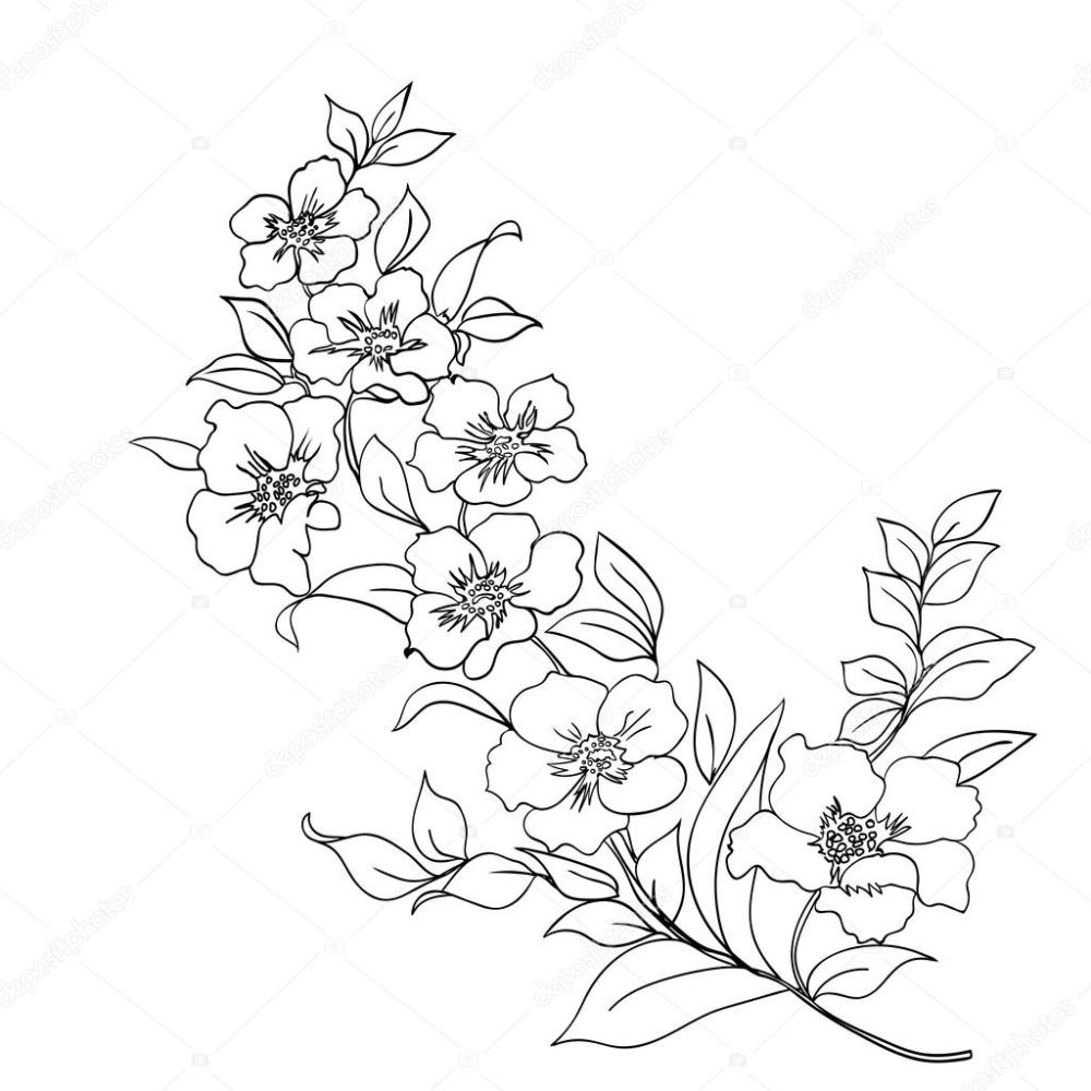 Pin Em Dibujo Y Acuarela
