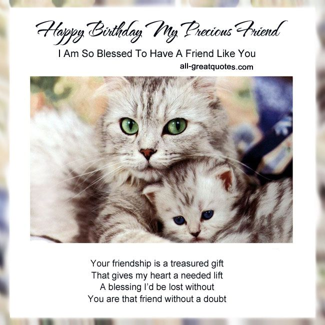 Happy Birthday Cat We Heart It: Happy Birthday My Precious Friend .. I Am So Blessed To