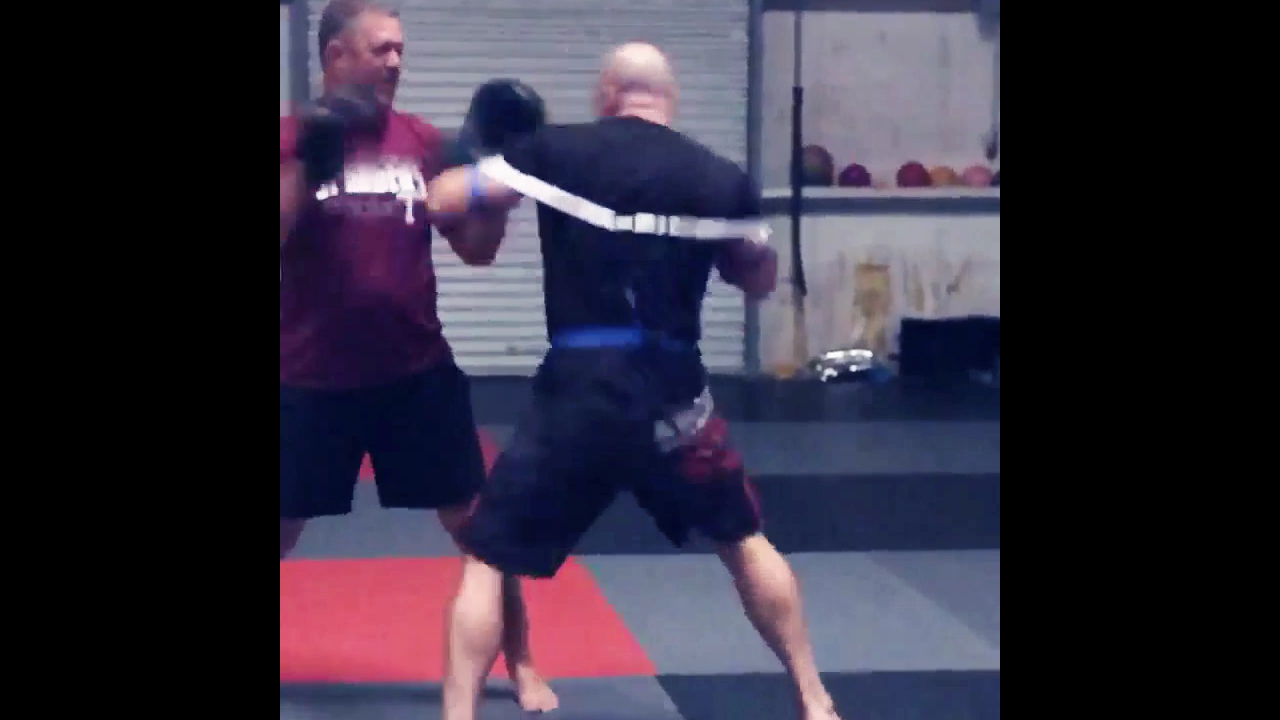 Power Training Aid • MMA Speed Trainer • Kickboxing