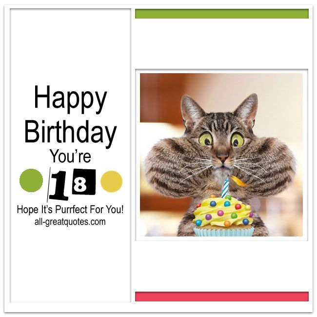 Happy Birthday Youre 18 Hope Its Purrfect For You Free Cards