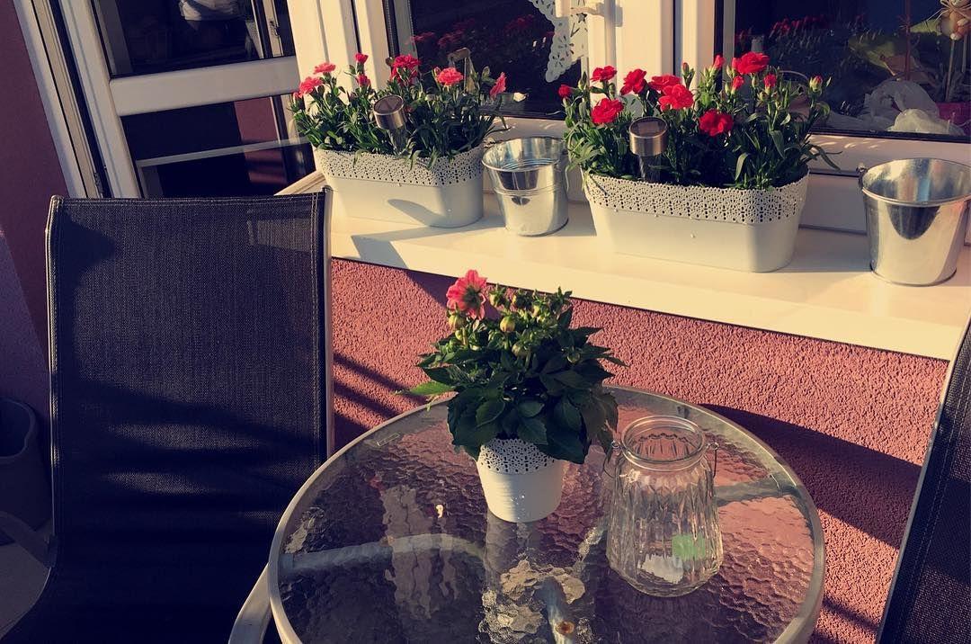 128 Aprecieri 5 Comentarii Marta Martagk28 Pe Instagram Balkon Kwiaty Gozdziki Slonce Wiosna Ciepelko Mini Glass Vase Decor Table Decorations