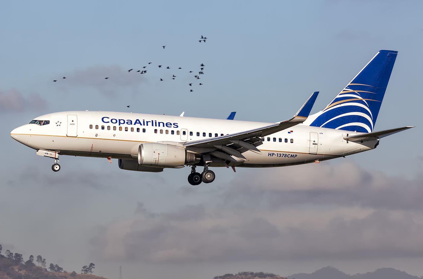 Boeing 737-7V3 (Copa Airlines) | Cidade do Panama