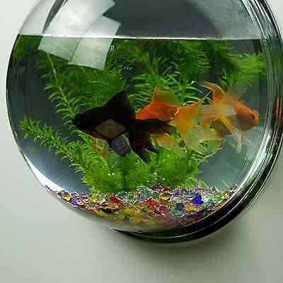 Details about Wall Mount Fish Bowl Acrylic Aquarium Tank
