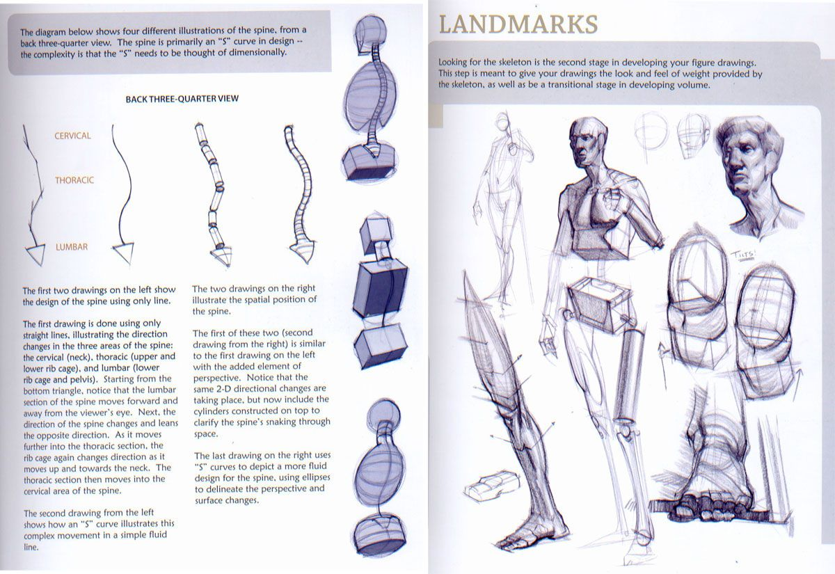 How to draw the human figure, download the book | http://skyrye.com ...