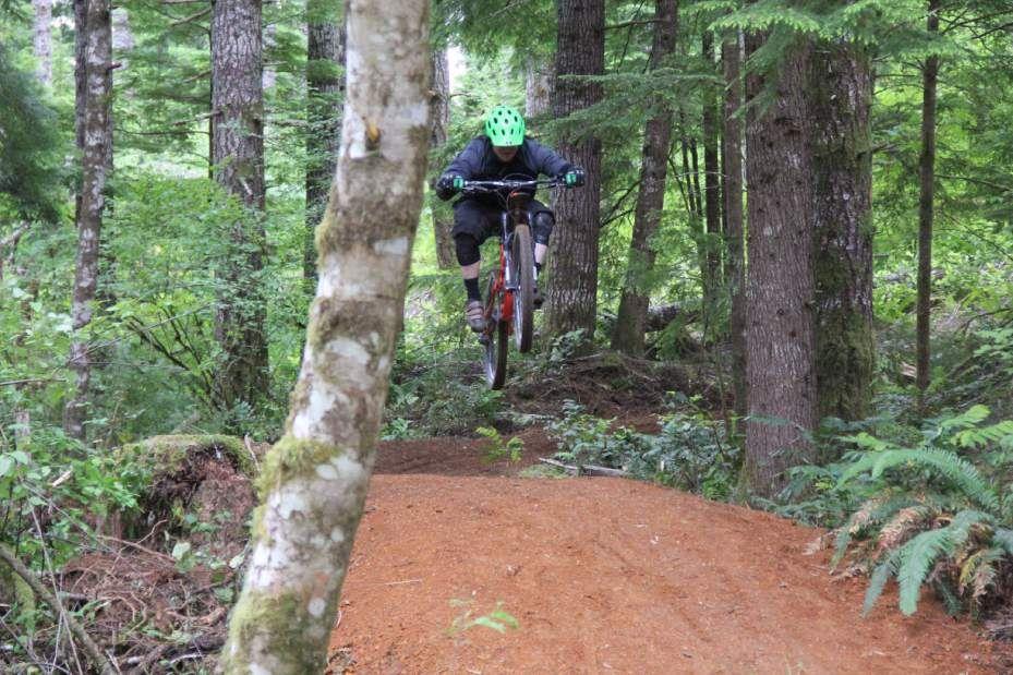 New Rural Mountain Biking Network In Coast Range Alsea Mountain
