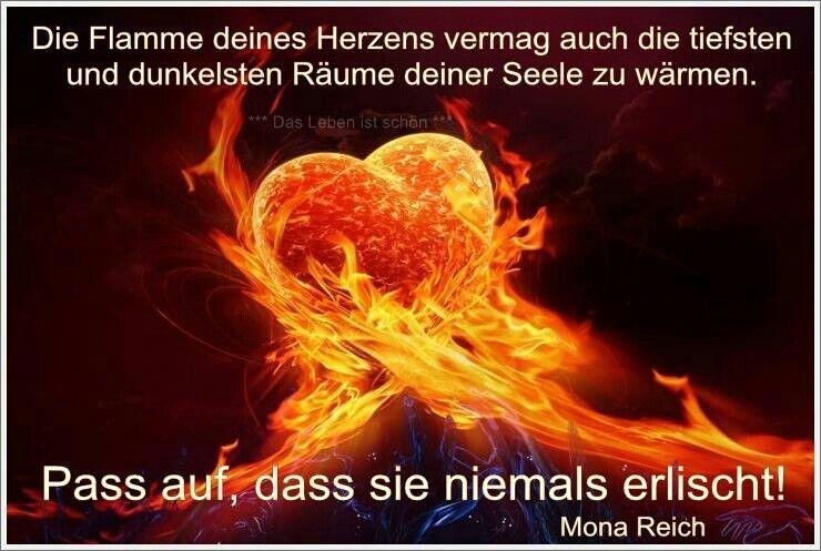 Dafur Danke Ich Dir Vom Tiefsten Herzen Daizo Spruche Furs Herz Weise Worte Lebensweisheiten
