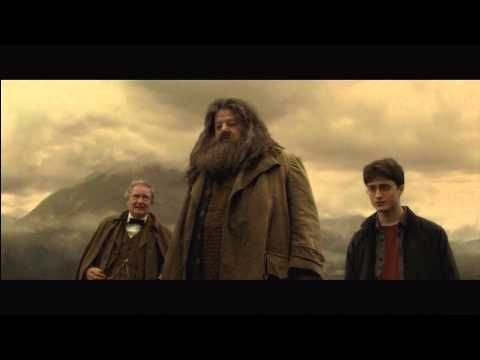 The average day of a ENFP when they are free to roam around by them selves.   Felix Felicis - Harry Potter and the Half-Blood Prince