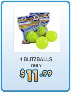 Order Page Blitzball The Ultimate Backyard Baseball Backyard