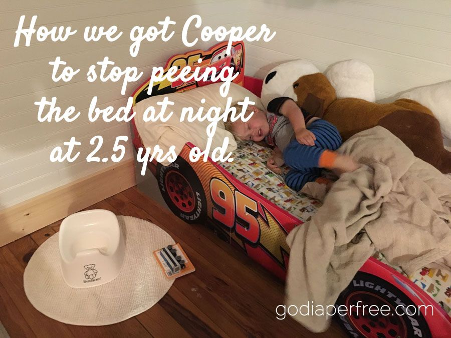 This Is How We Got Cooper To Stop Peeing The Bed At Night At 2 5