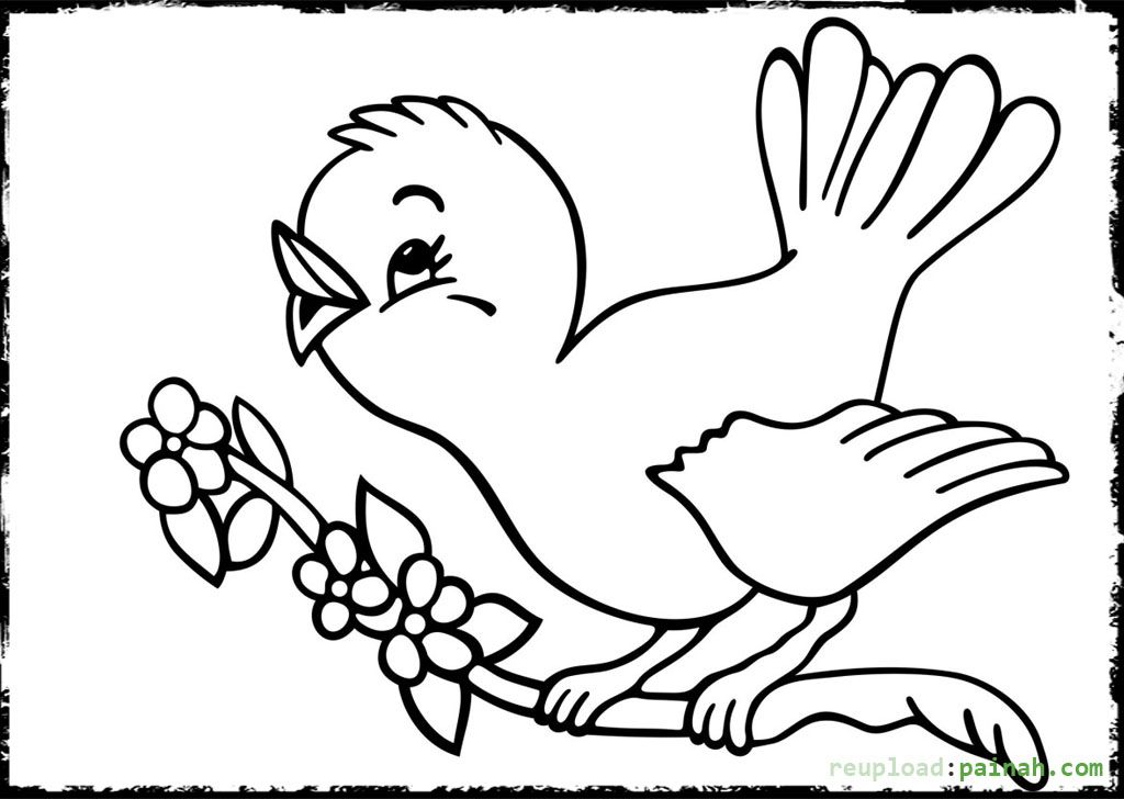 Baby Bird Coloring Pages Printable Bird Coloring Pages Coloring