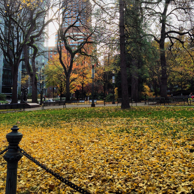 Autumn in the Park Blocks. Portland.