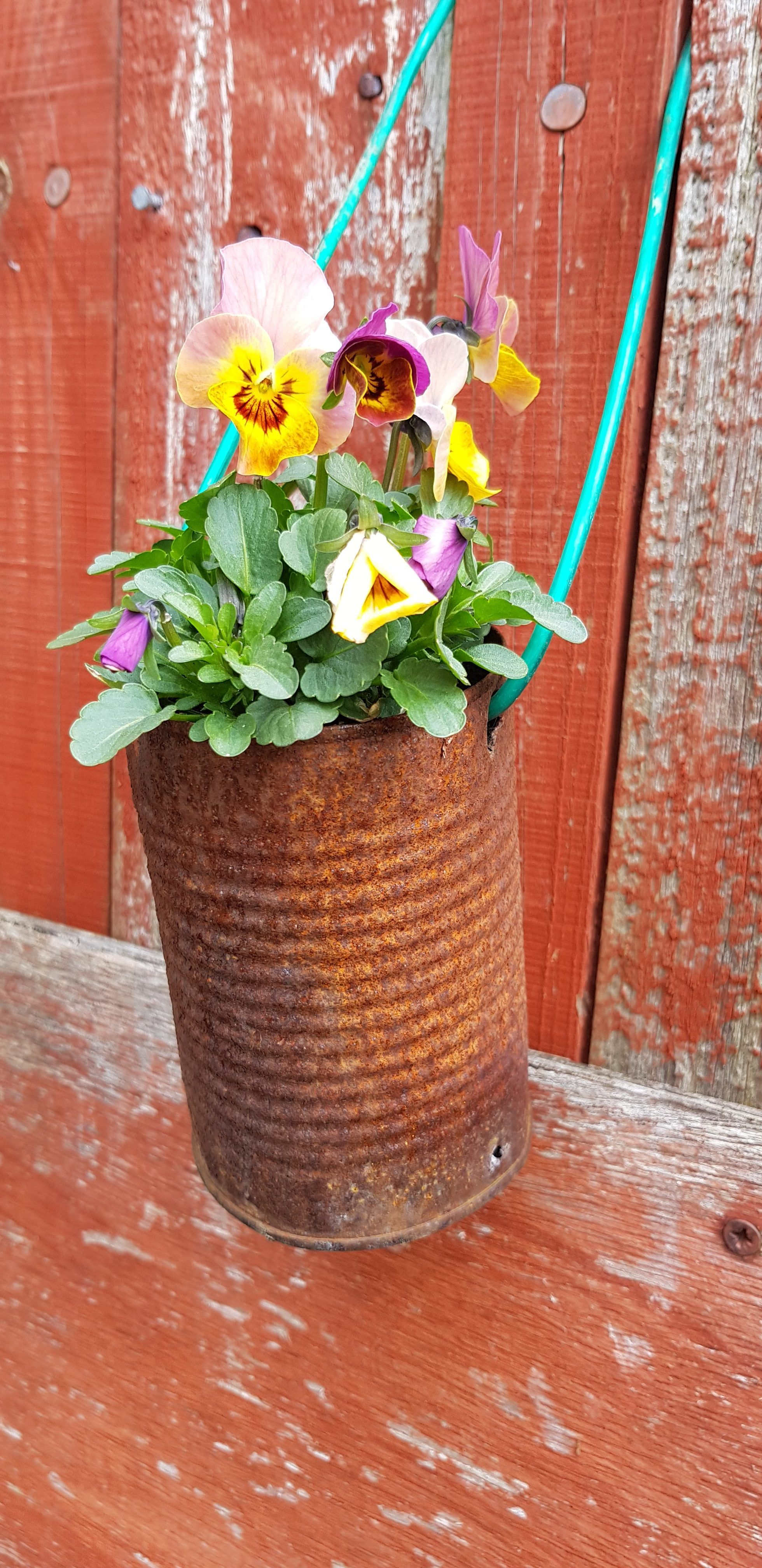 17 Quick And Easy Earth Day Activities For Kids | Garden ...