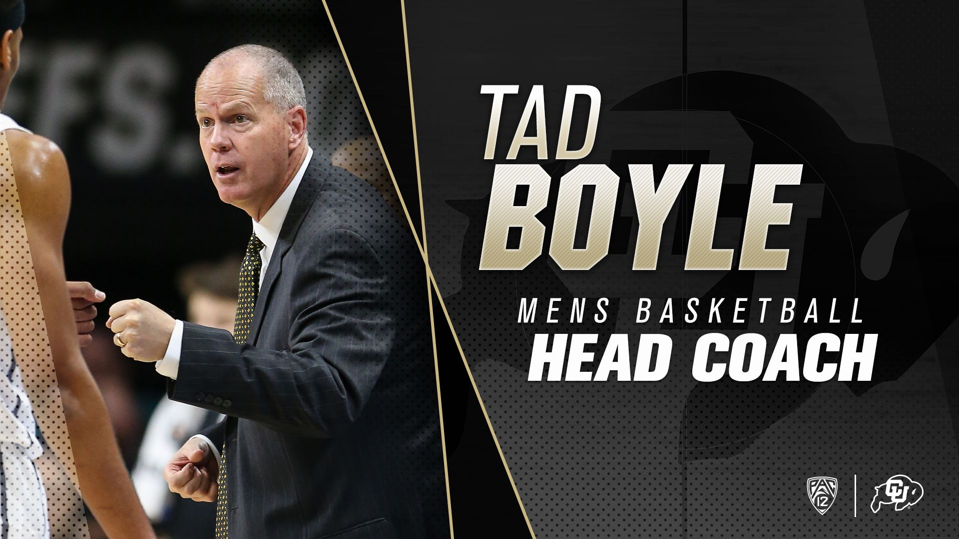 Pin by BRENT on Colorado Athletics Graphic Design Mens