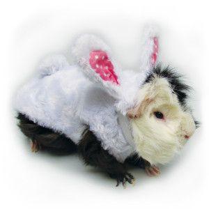 Null Pet Costumes Pets Bunny Rabbit