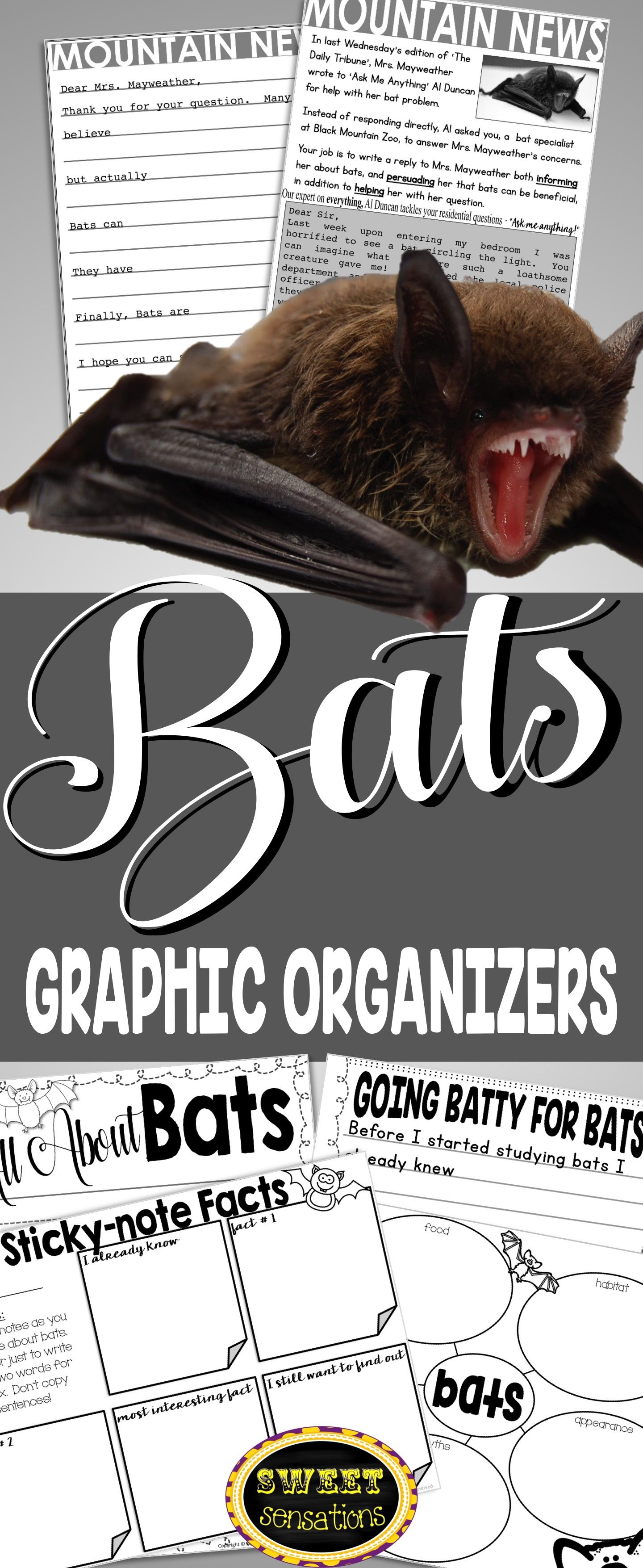Bat Graphic Organizers And Writing Paper For Seasonal Or