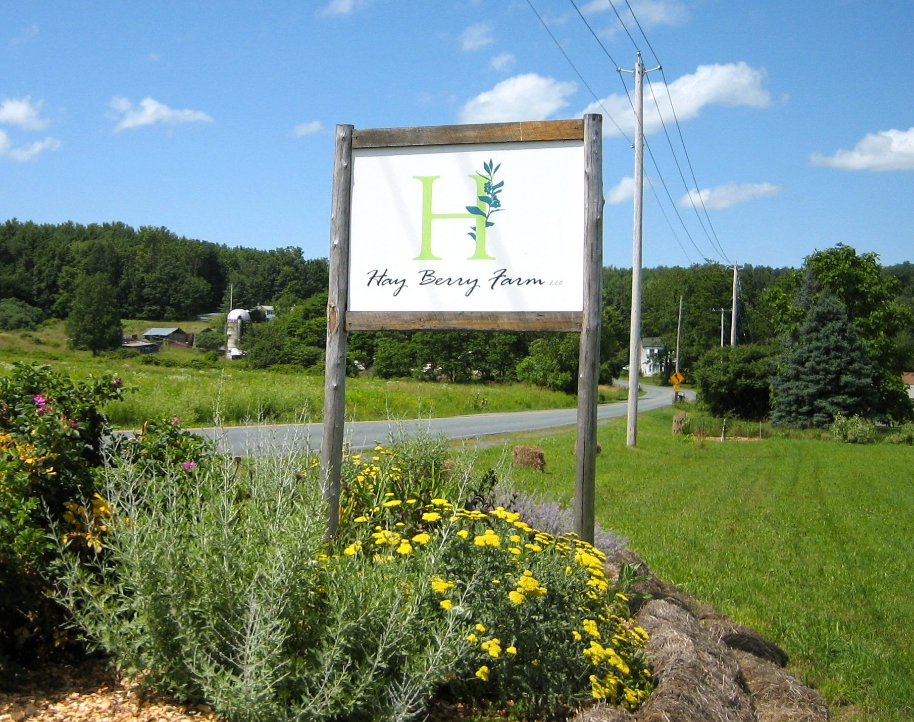 Hay Berry Farm, Hoosick Falls, New York. You pick