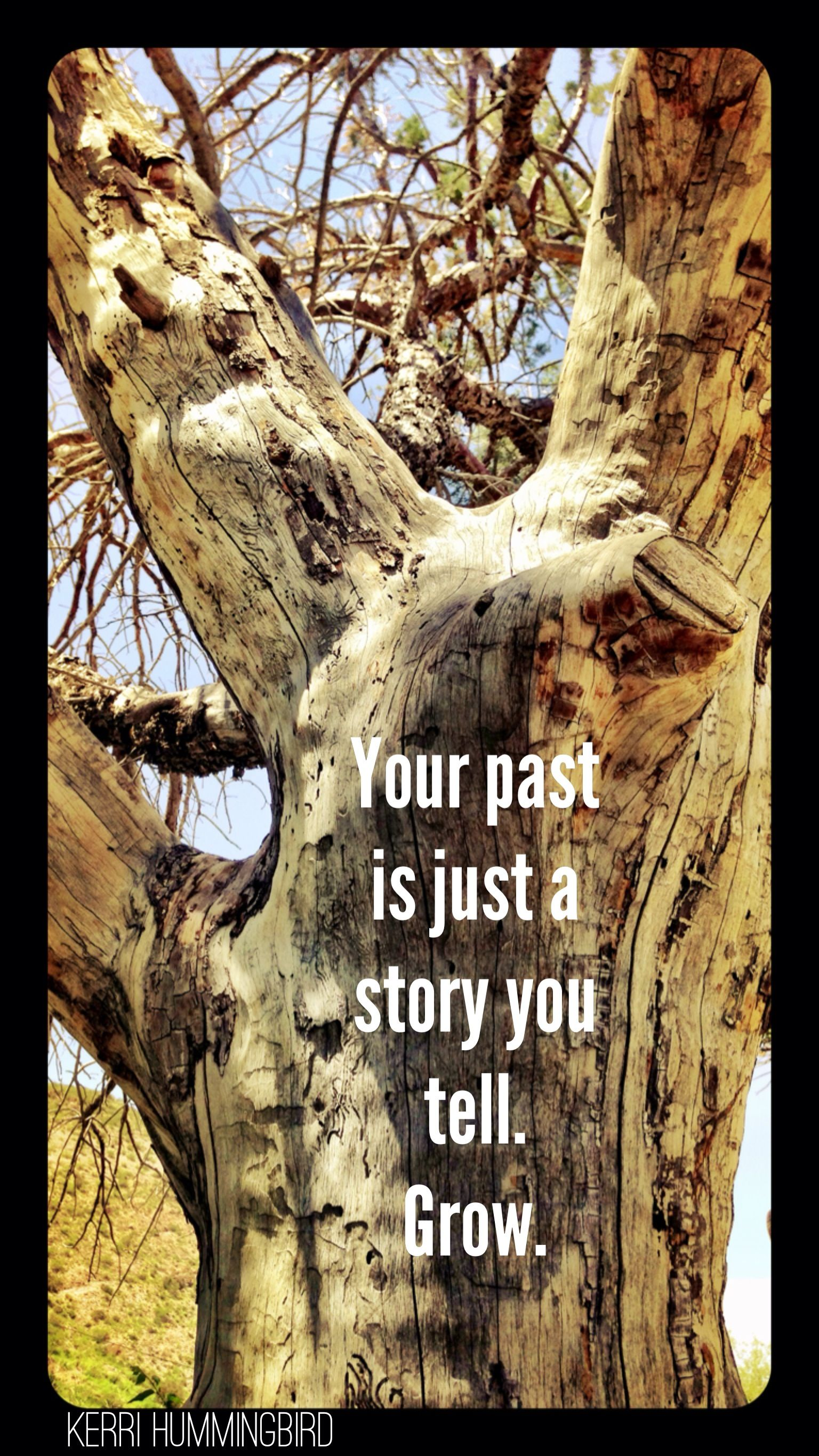 Your past is just a story you tell. Grow.