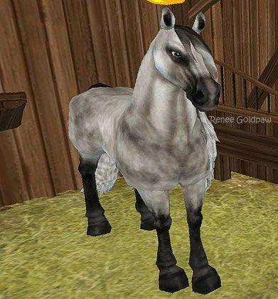 Hastar Starstable Database Horses Star Stable Animals